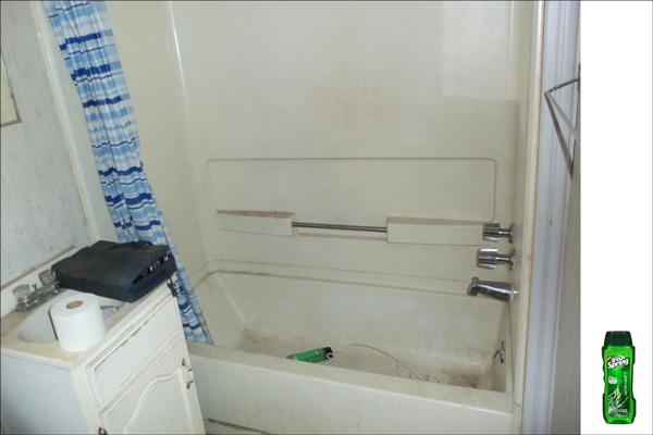 Ebay Foreclosure bathroom : Monessen, PA