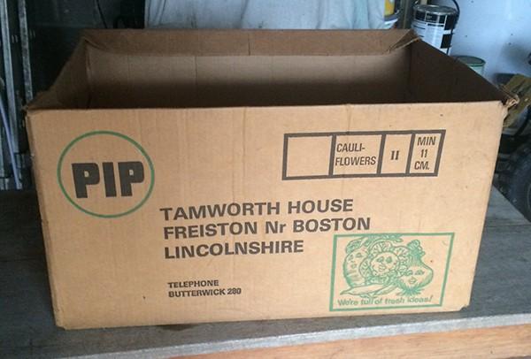 PIP-cauliflowers-box