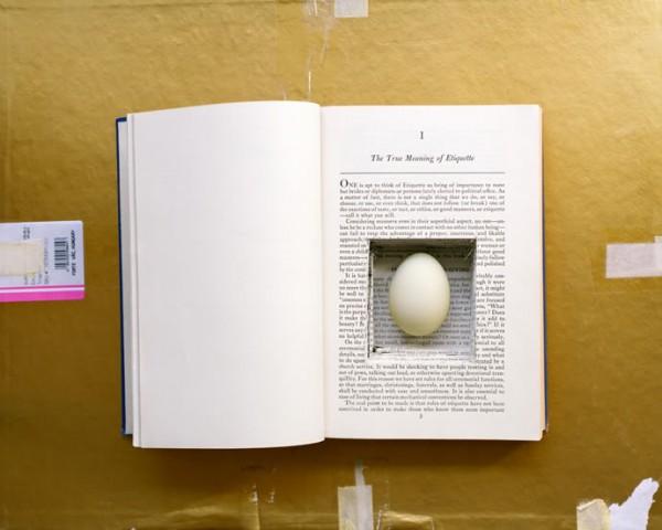 sarahpalmer-egg-in-book