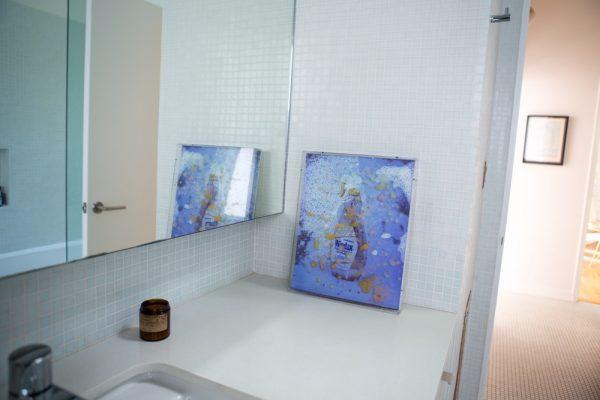 WindexScan-in-bathroom