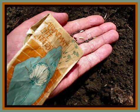 Abundant life seeds_pictoscribe